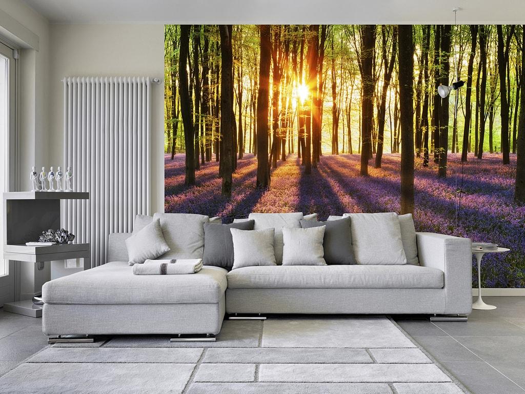 Wizard+Genius W+G vliesová fototapeta Rozbřesk v lese 366x254 cm
