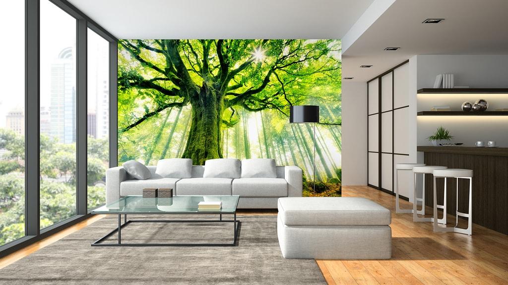 Wizard+Genius W+G vliesová fototapeta Prosvětlený strom 366x254 cm