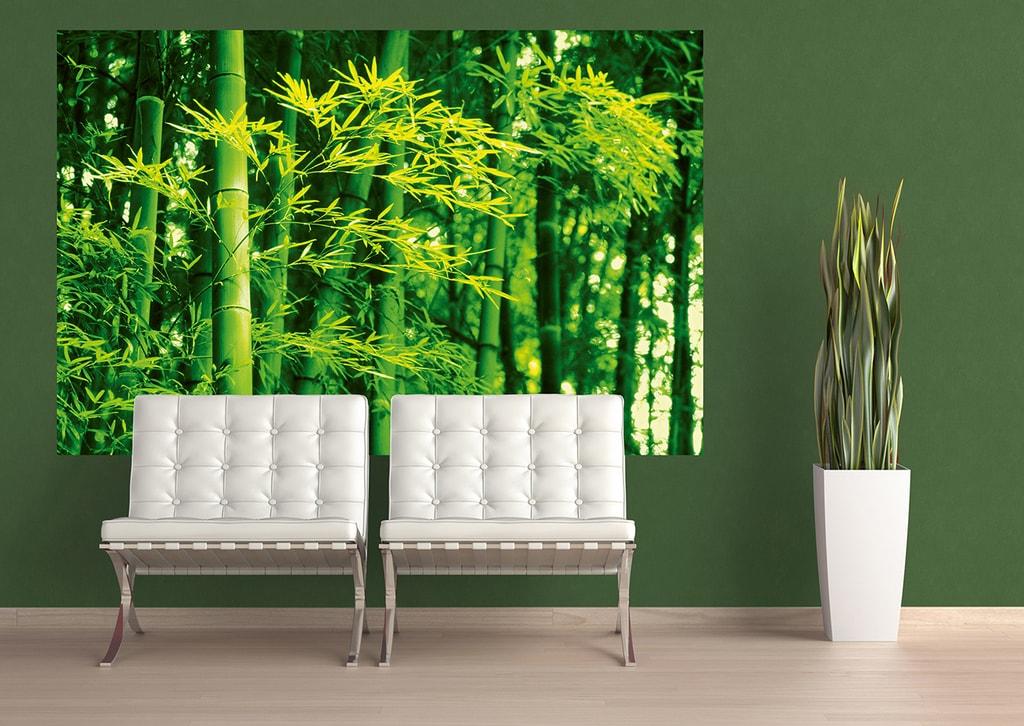 Wizard+Genius W+G Giant Art® Jarní bambus 175x115 cm