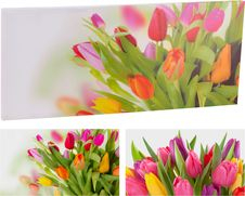 Home colletion maxi obraz s tulipány 78x35 cm